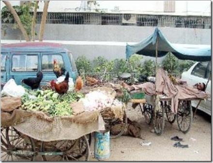 مرغیوں کی عید